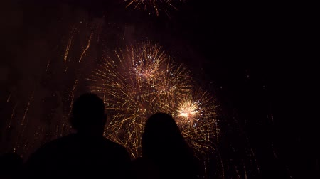 Young Couple Hugging In Front Of Golden Fireworks Celebration Love Romance Beautiful Celebration
