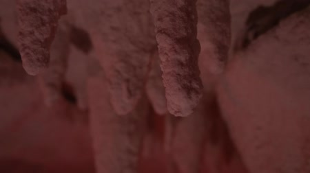 subterranean : Stalactites in a salt cave. Stock Footage