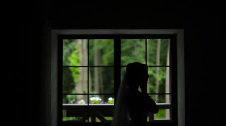 rastr : Silhoutte of bride wearing earrings.