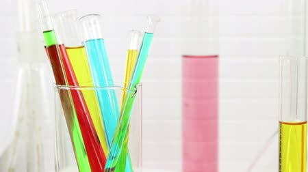 Colored chemical samples in the test tubes Stok Video