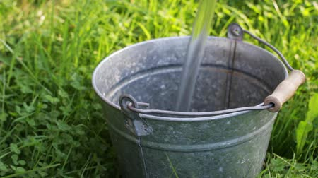 Bottomless metal bucket is endless filled with water in the grass, video looped