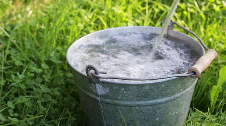 Old metal bucket is filled with water in the grass Stok Video