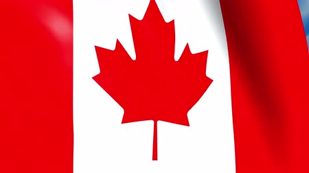 Canadian flag waving on wind, close up. 3D illustration