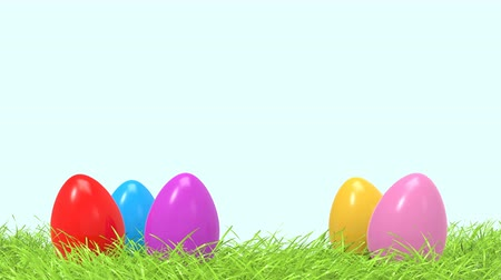 Colorful Easter eggs in spring green grass zoom with free and empty space for design or text. Easter holiday concept animation. 3D Rendering