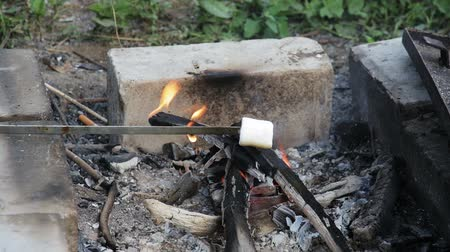Marshmallow roasted in campfire and getting bronzed Stok Video