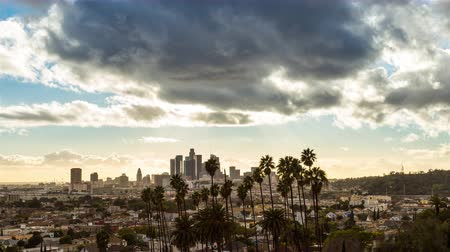 us bank tower : Beautiful Downtown Los Angeles and Palm Trees Timelapse