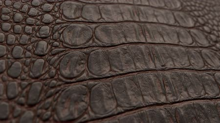 clothing : backgrounds of leather texture. Macro, HD. Dolly shot