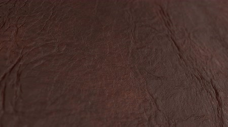 skin brown : backgrounds of leather texture. Macro, HD. Dolly shot