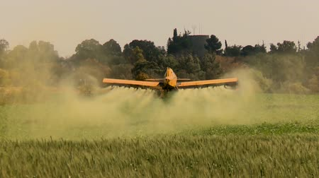 plodina : Agriculture Aircraft ( crop duster ) with sound. Yellow crop duster ( agricultural aircraft ) flies low over a field with wheat and splashing, sprays chemicals against pests . Shooting from behind. ( Tripod) CU