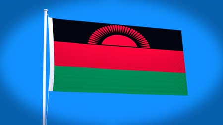 malawi : the national flag of Malawi
