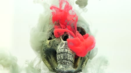 denied : Skull and ink in water