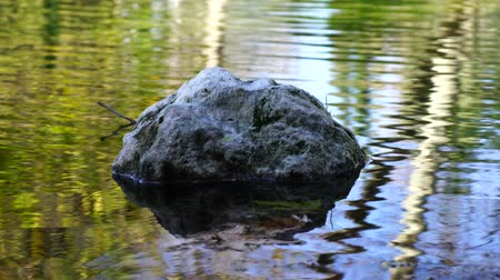lake : Rock and water