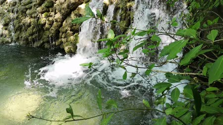 duchas : Waterfall in nature Archivo de Video