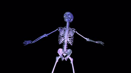 csontváz : Skeleton Classic Dance Bow. Reflecting ground. CGI HD