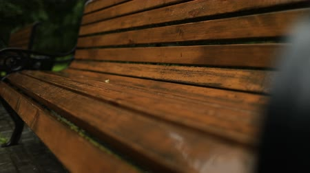 pingos de chuva : Rain drops on wet wooden Park bench