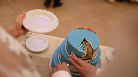 wed : A bride and a groom is cutting their wedding cake Stock Footage