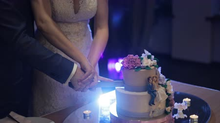 A bride and a groom is cutting their wedding cake Wideo