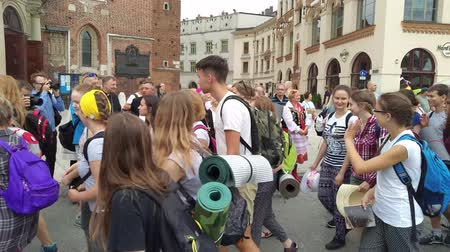 wisla : KRAKOW, POLAND-AUGUST 6, 2017: Bishop Marek Jedraszewski greets pilgrims students who reach the Shrine of the Black Madonna of Jasna Gora in Czestochowa starting from Krakow. It is about 152 km long Stock Footage