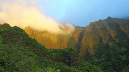 arc en ciel : Amazing View Tropical, Rainbow Waterfall in Hawaii Vidéos Libres De Droits