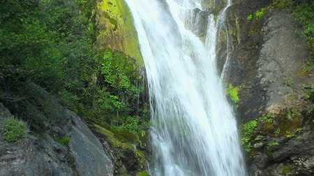eixo : Waterfall, Close up View of Lush Waterfall Stock Footage