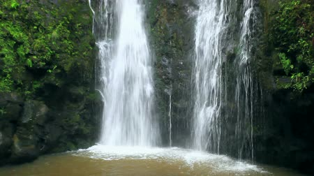 девственница : Waterfall in Jungle