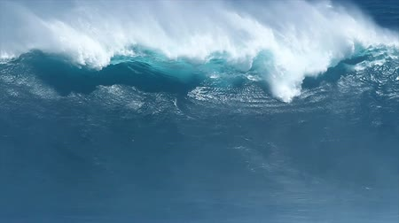 hawai : Ocean Wave in Hawaii Filmati Stock