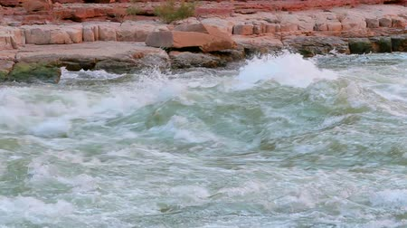 velg : River Rapids in Colorado River in Grand Canyon National Park Stockvideo