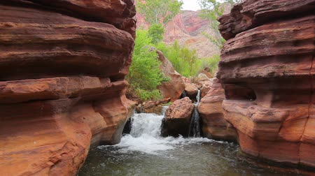 batı : Stream Flowing in Beautiful Canyon in the Grand Canyon National Park Stok Video