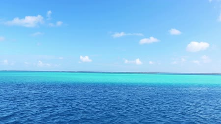 Tropical Blue Ocean Archivo de Video