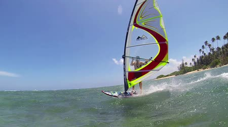 sunset sea : Windsurfing, Fun in the ocean, Extreme Sport