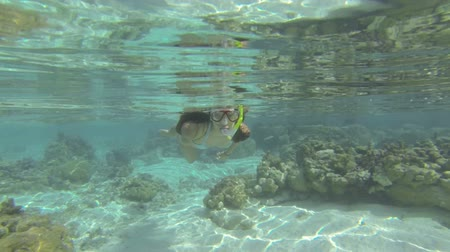 šnorchl : beautiful woman snorkeling in clear blue waters over coral reef in tahiti