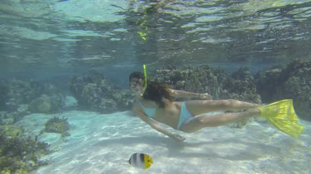 beautiful woman snorkeling in clear blue waters over coral reef in tahiti