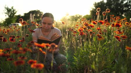 literatuur : Woman reading a book in a green field, among the grass and flowers