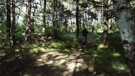 hareketli : Active sporty woman riding mountain bike on forest trail. Woman riding a bike in the woods Stok Video