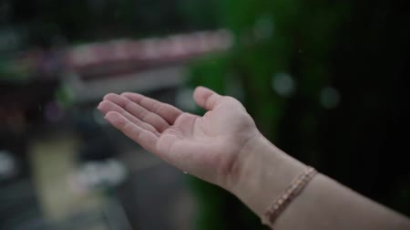 pleading : Close up of woman putting her hand in the rain catching drops of rain, water Concept. Stock Footage