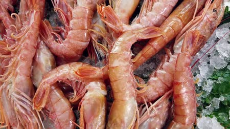 black and red : A look at the fishmonger with a box of fresh prawns Stock Footage