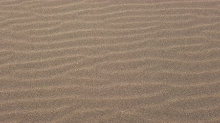 corrugated : Walking on the sand rippled by the wind