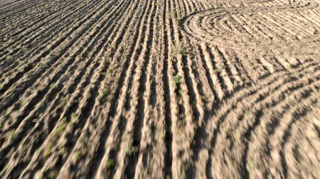 ditch : Rural aerial view with plowed field and furrows that draw the dry earth