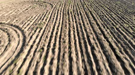 ditch : Aerial backwards flying in farmland plowed field and furrows that draw the dry earth Stock Footage