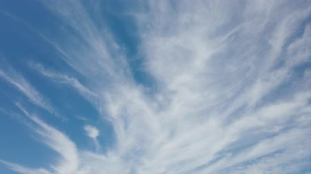 altostratus : Scenic cirrus lenticular clouds in time lapse with awesome white filaments of clouds and light effects