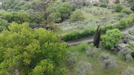 farmhouse : Hilly vegetations aerial view with oaks, cypresses and olive trees