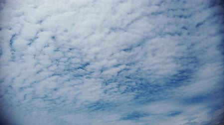 altocumulus : Awesome time lapse clouds with fluffy white tall cumulus rolls in the air guided by wind