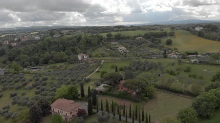 ulivo : Drone aerial view of italian countryside above valley with olive trees and forests with green cloudy sky