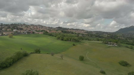 Aerial view of the green fields of an agricultural landscape