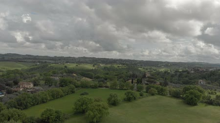 Awesome aerial view above oak forests and green valley in rural overcast sky Wideo