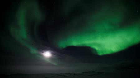 noordpool : Northern Lights met volle maan (Arctic, Spitsbergen) Stockvideo