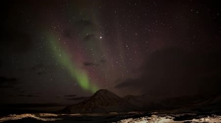 noordpool : Northern Lights in het Noordpoolgebied Stockvideo