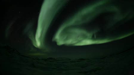 noordpool : Arctic winter - Northern Lights Stockvideo