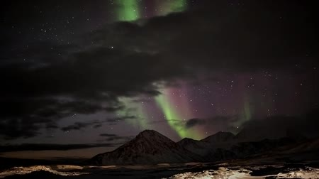 norvégia : Colorful Northern Lights in the Arctic - Svalbard, Spitsbergen