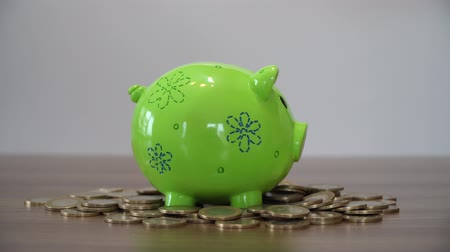 esterlino : Saving Money. Putting Coins in a Piggy Bank. Stock Footage